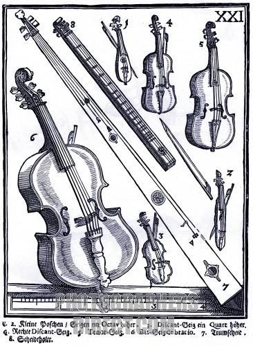 Bass Violin (Nº 6) 1619
