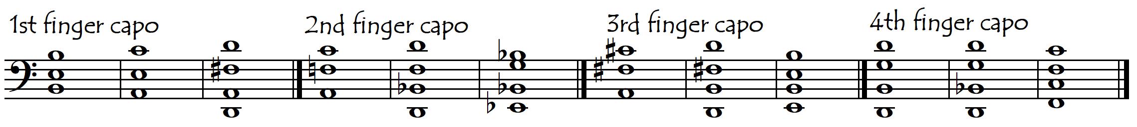 all fingers capo chords basic